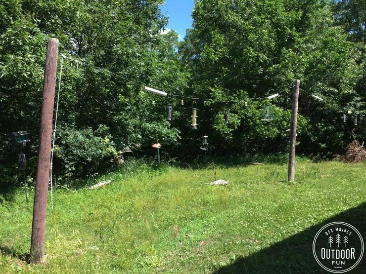 kuehn conservation area earlham iowa bird blind