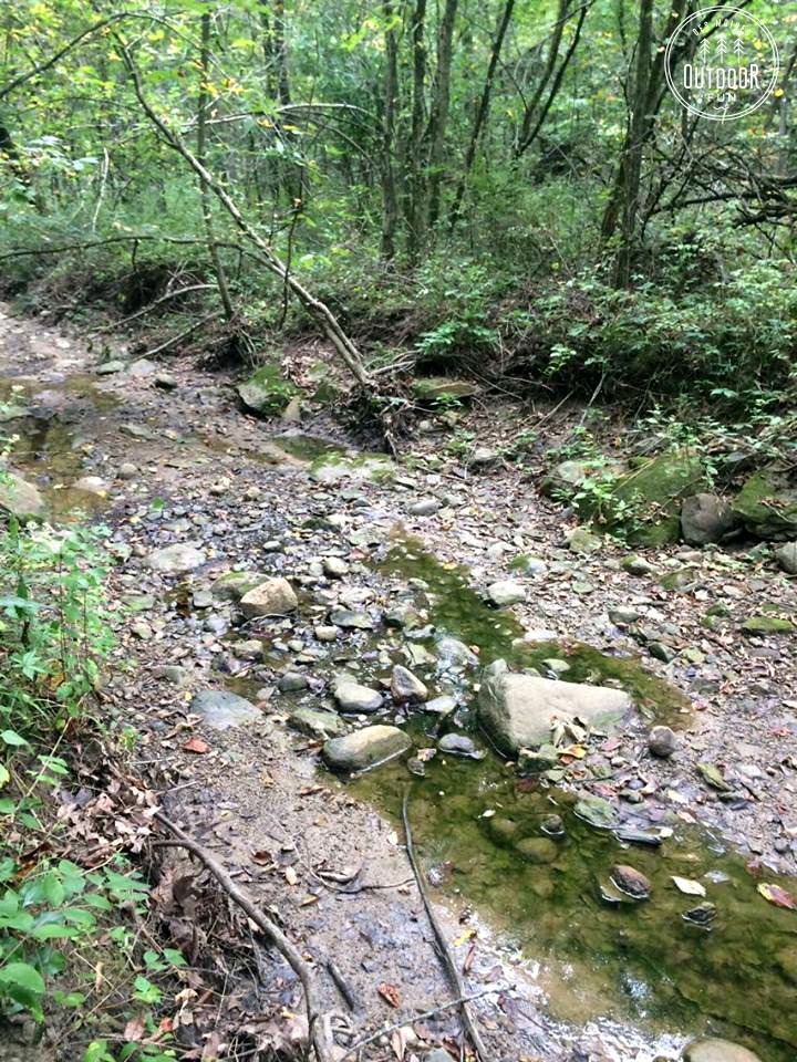 Kuehn Conservation Area earlham iowa (7)