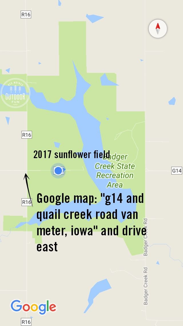 badger creek recreation area sunflower field directions