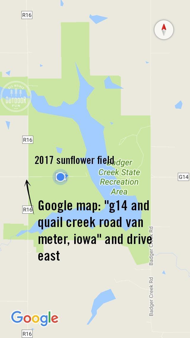badger creek recreation area sunflower field directions