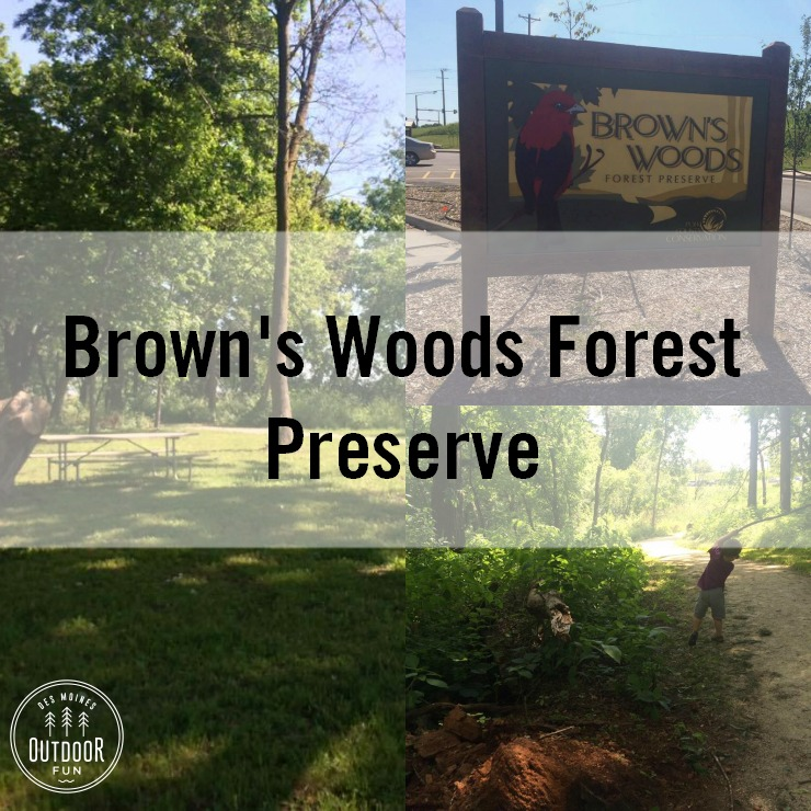 Browns Woods Forest Preserve West Des Moines Iowa Hiking (1)