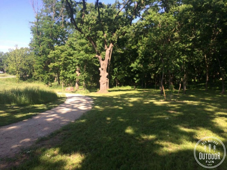 browns woods forest preserve west des moines iowa hiking (4)