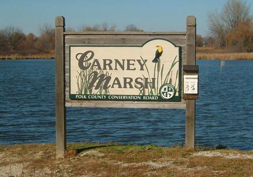 Carney Marsh
