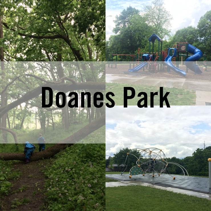 doanes park pleasant hill iowa