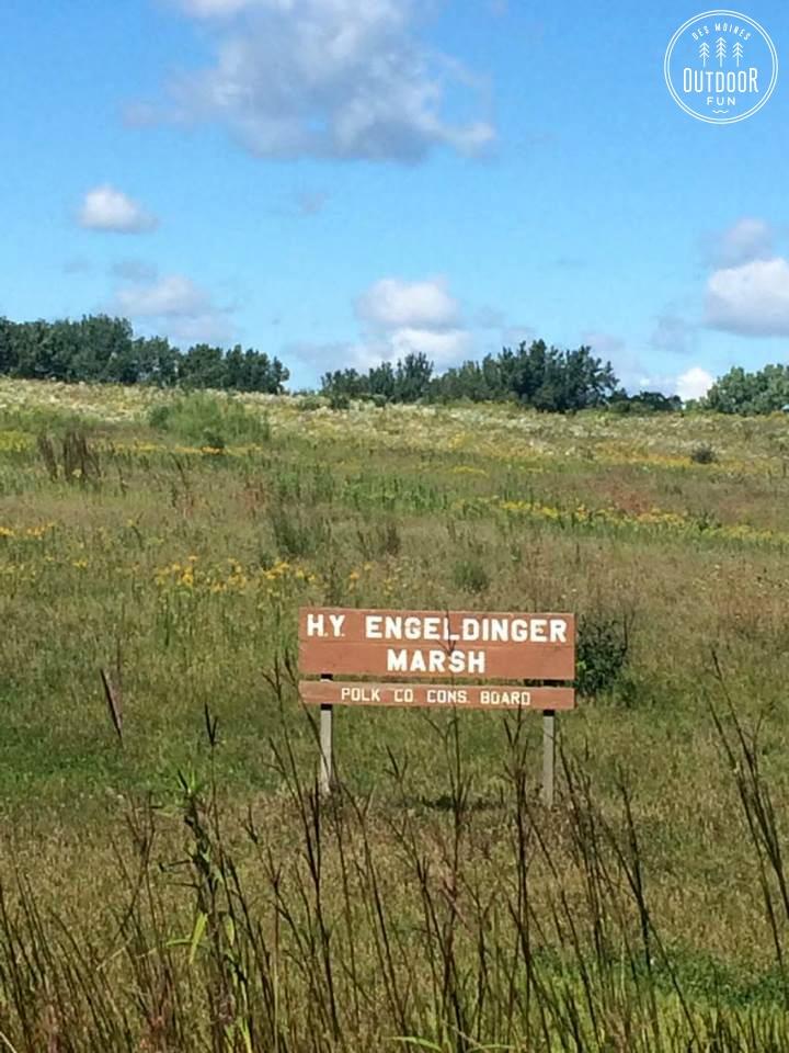 engeldinger marsh (1)