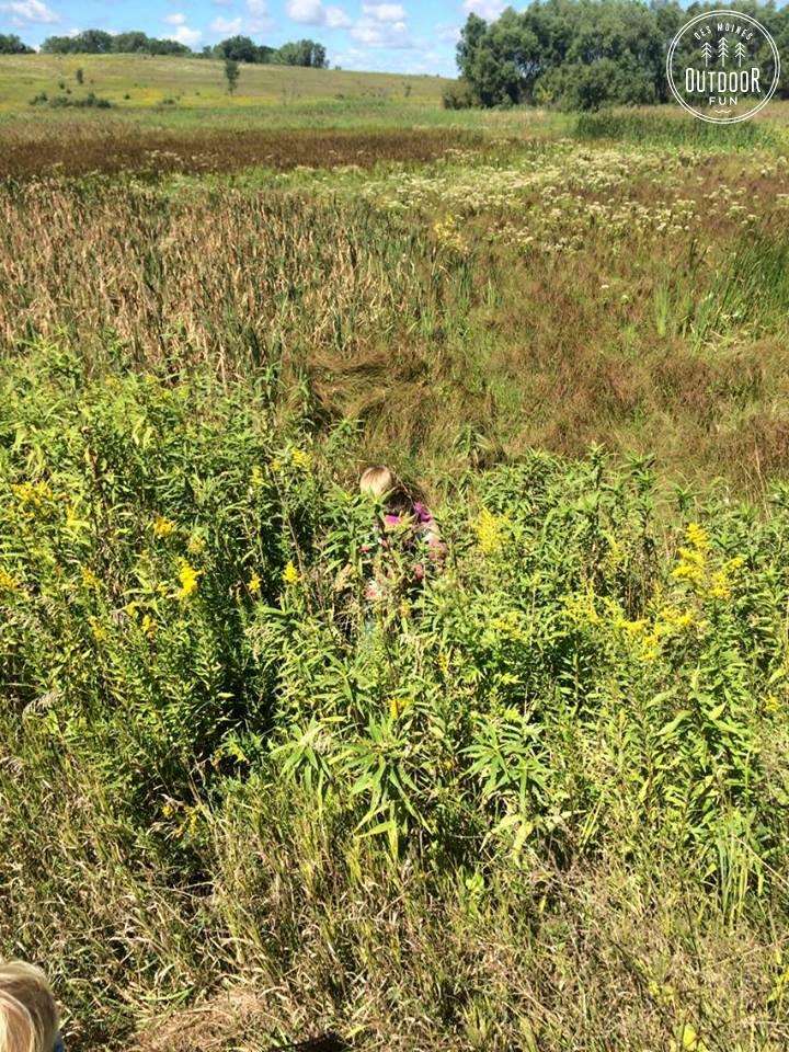 engeldinger marsh (5)
