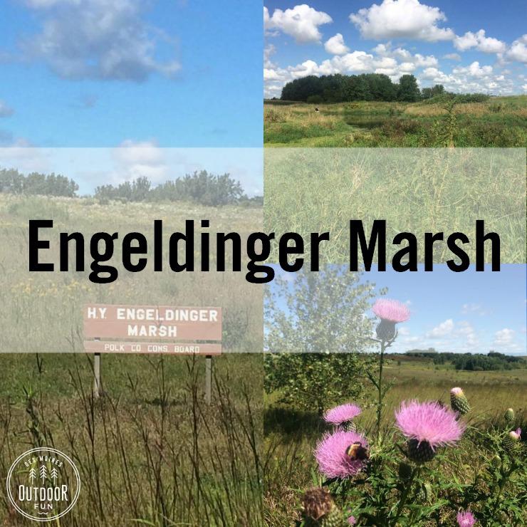 engeldinger marsh des moines maxwell iowa