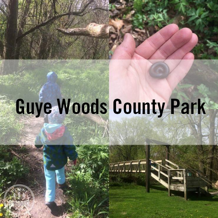 Guye Woods County Park Winterset Iowa (11)