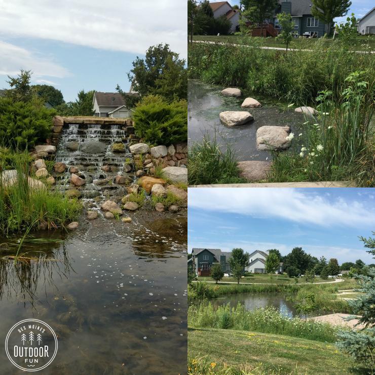 pond at enabling garden