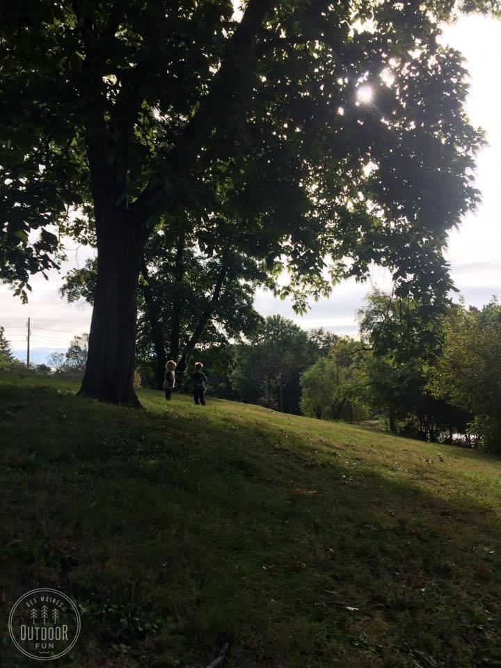 witmer park des moines iowa (3)