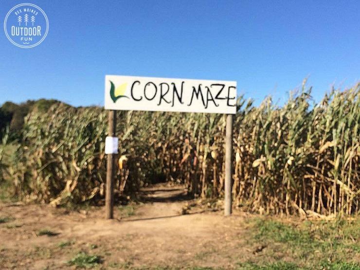 des-moines-corn-maze