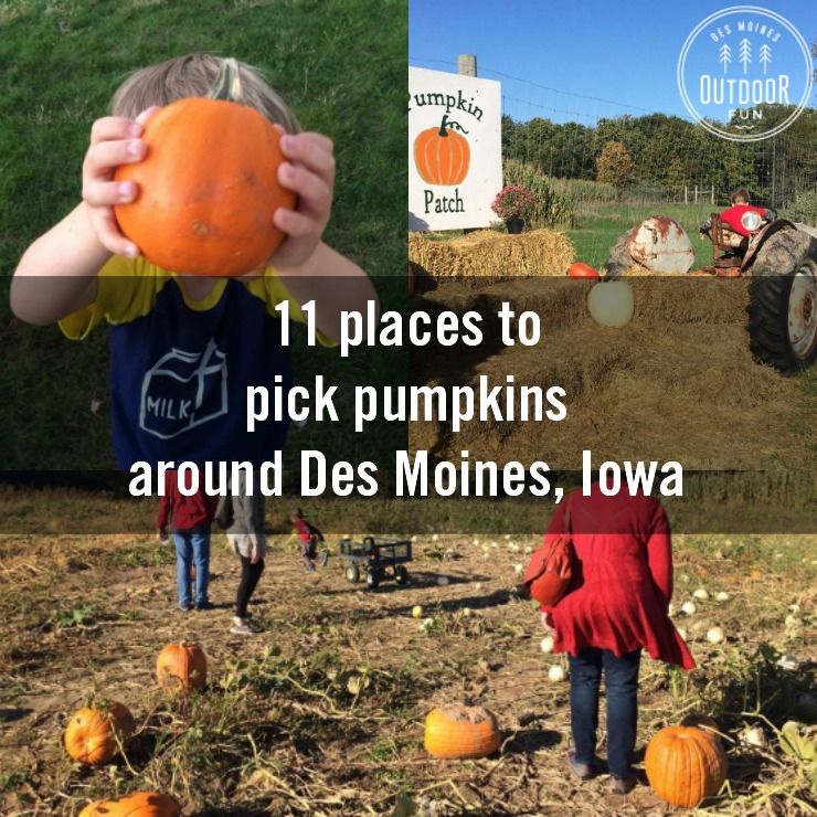 Des Moines Pumpkin Patches And Corn Mazes