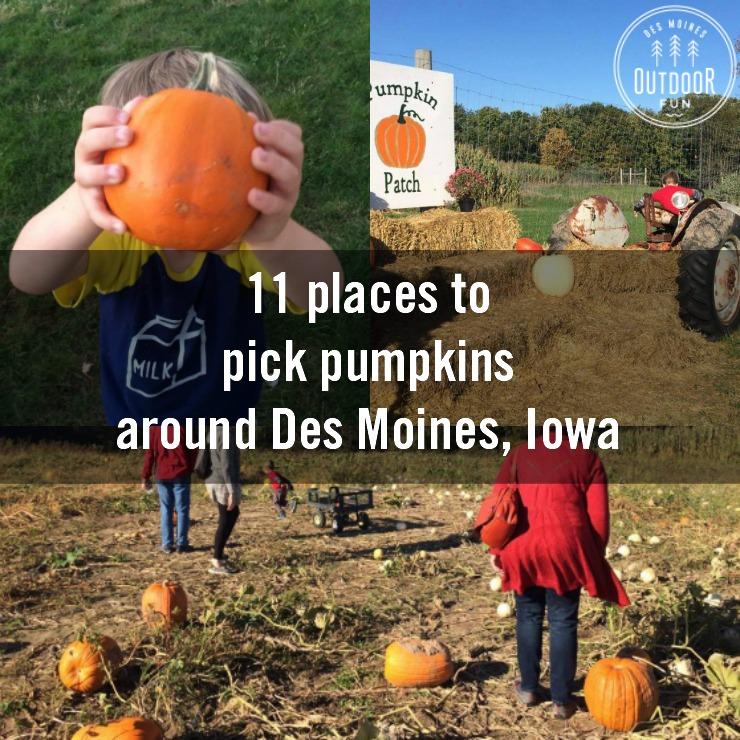 Des Moines Pumpkin Patches And Corn Mazes