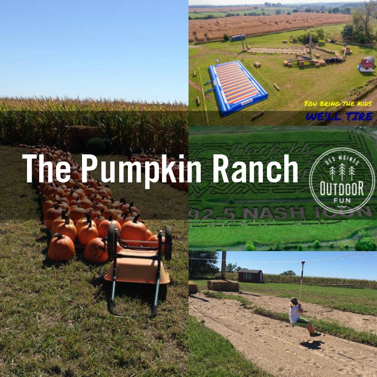 [photos courtesy of The Pumpkin Ranch]