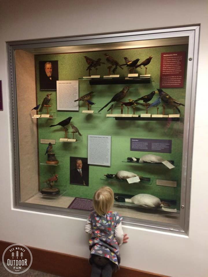 state-historical-museum-of-iowa-free-place-to-take-kids-inside-des-moines-iowa-5