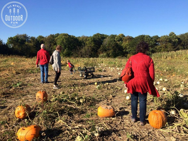 wills-orchard-wills-pumpkin-patch-adel-iowa-des-moines-6