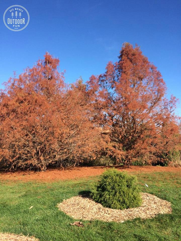 brenton-arboretum-dallas-center-iowa-13