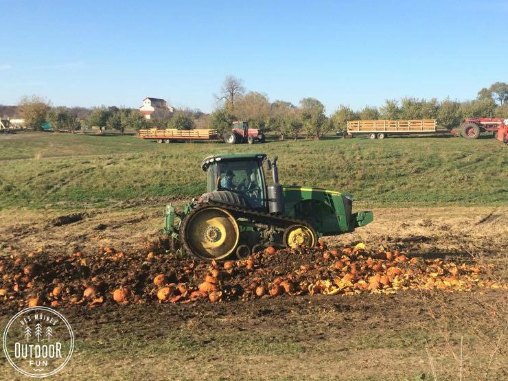 center-grove-orchard-and-pumpkin-patch-des-moines-iowa-7