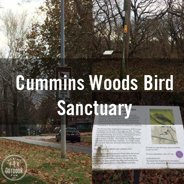 Cummins Woods Bird Sanctuary