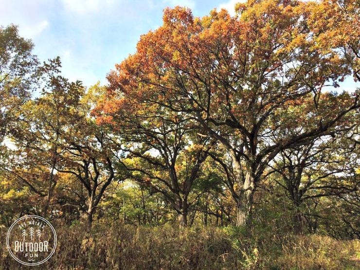 southwoods-park-west-des-moines-iowa-2