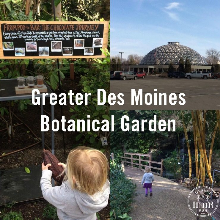 Greater Des Moines Botanical Garden Iowa (4)