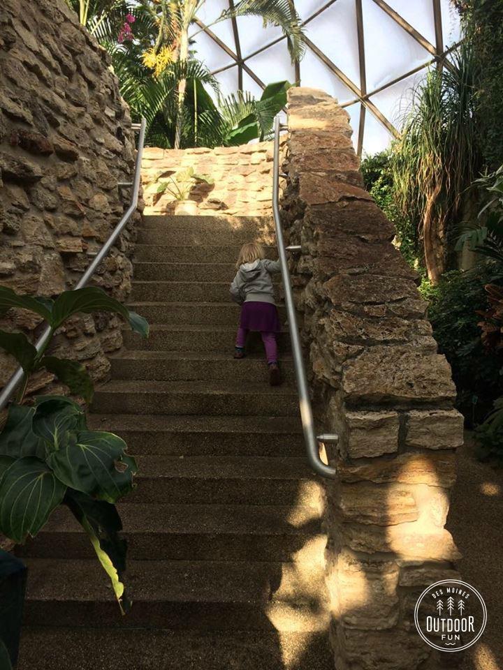 Greater Des Moines Botanical Garden iowa (7)