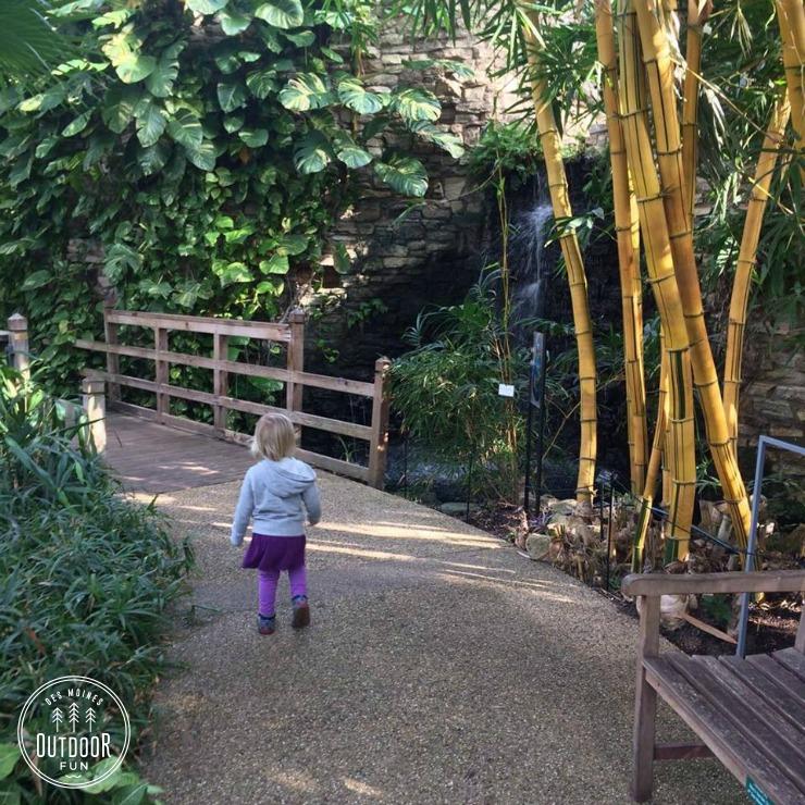 Greater Des Moines Botanical Garden iowa (8)