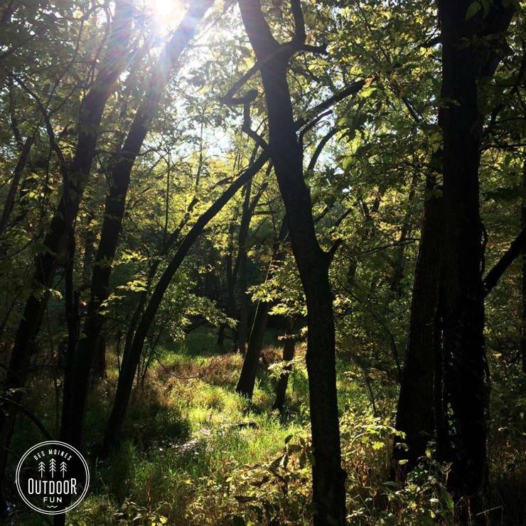 sycamore trail des moines iowa (1)