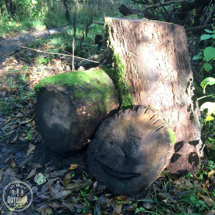 sycamore trail des moines iowa (2)
