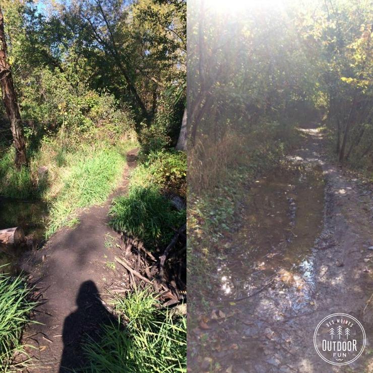 sycamore trail des moines iowa (7)