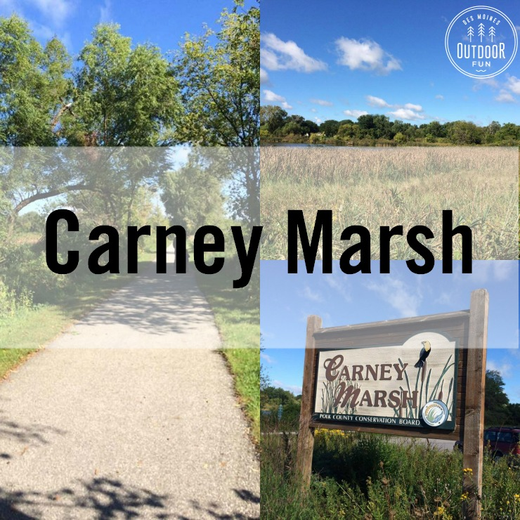 Carney Marsh Ankeny Des Moines Iowa