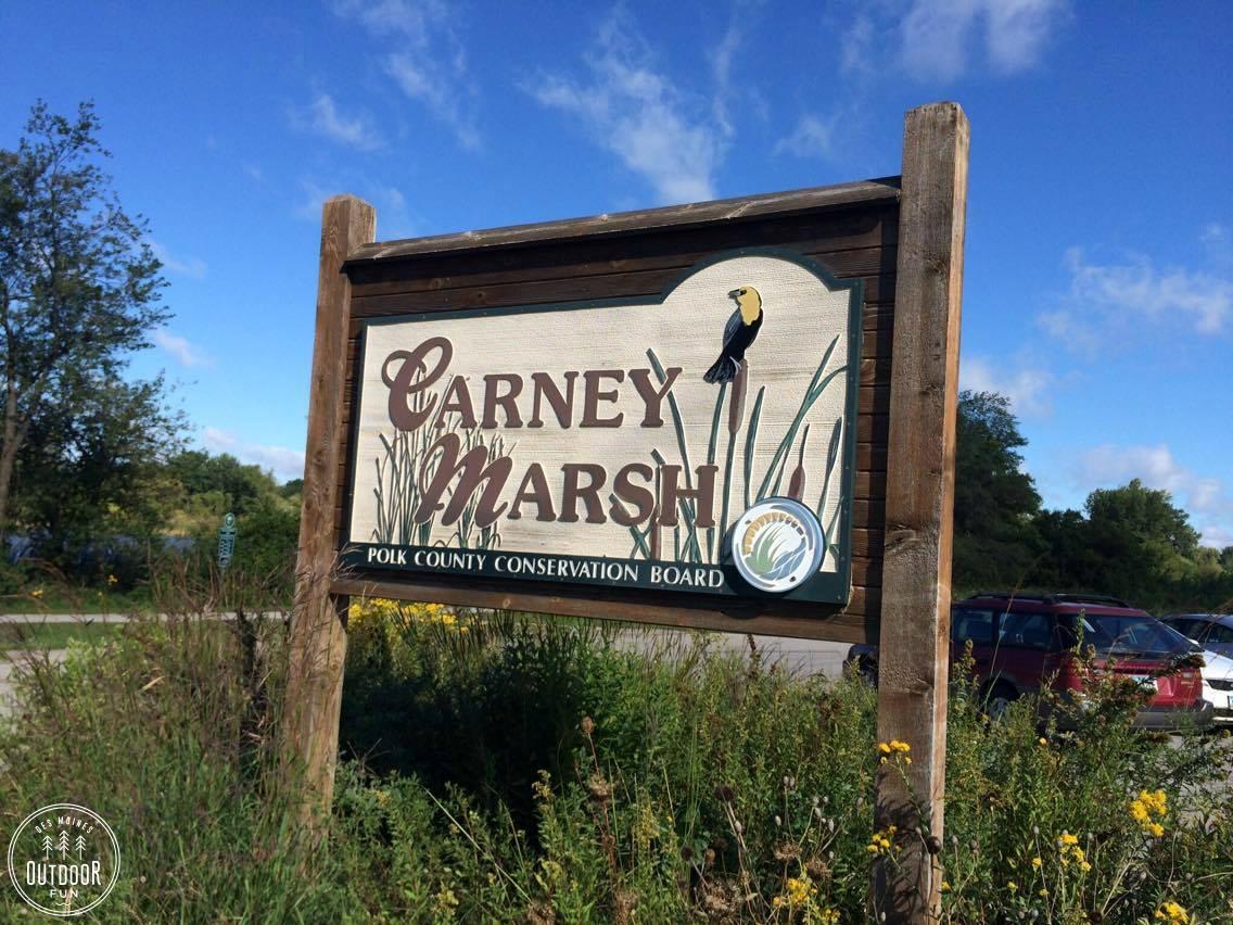 carney marsh des moines ankeny iowa (4)
