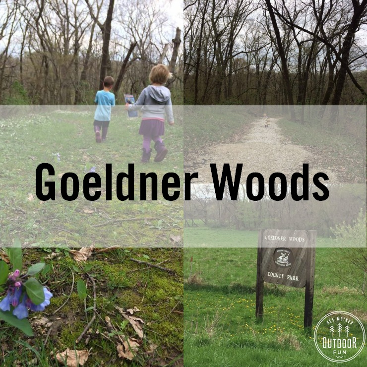 goeldner woods hiking earlham des moines iowa