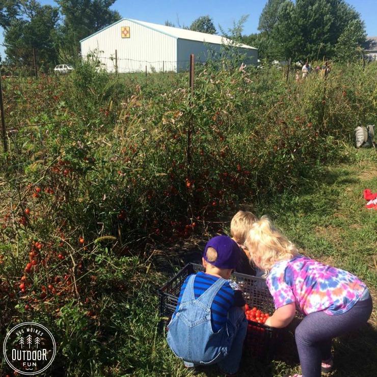 gardening for good madrid iowa (2)