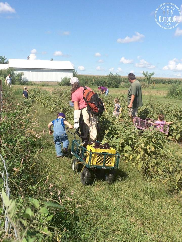 gardening for good madrid iowa (5)