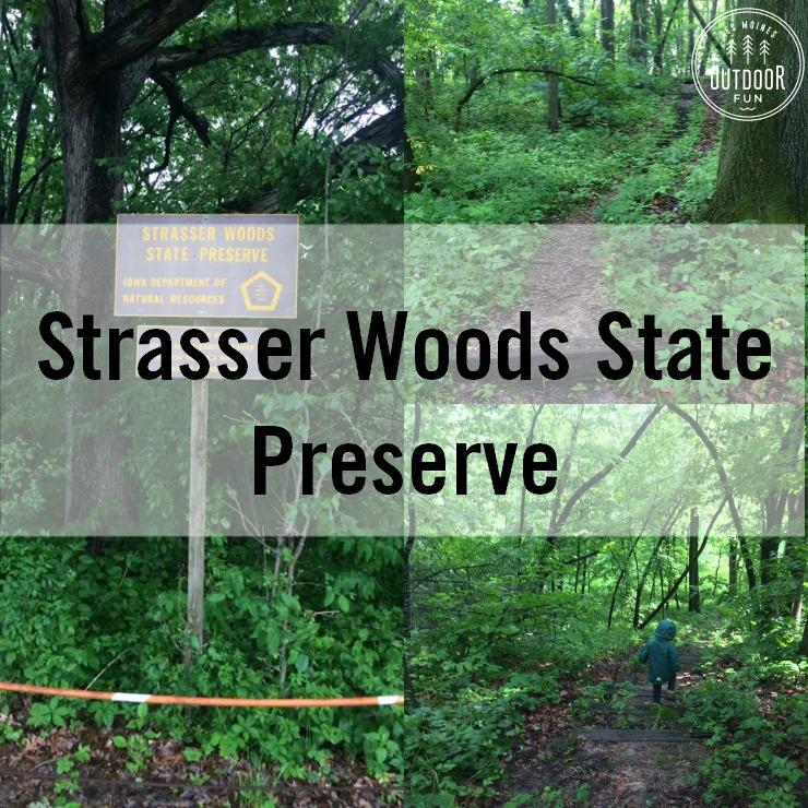 Strasser Woods State Preserve