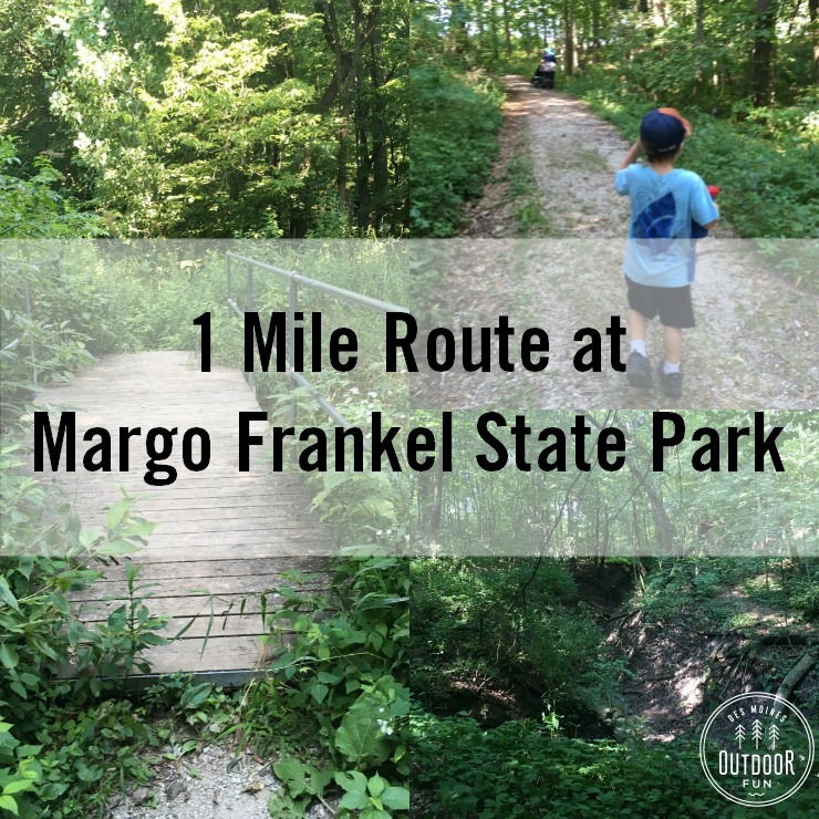 1 Mile Hike At Margo Frankel State Park