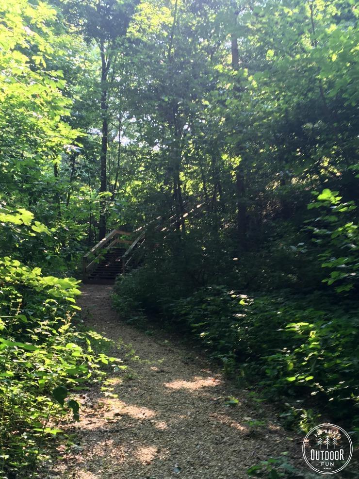 margo frankel state park trail (2)
