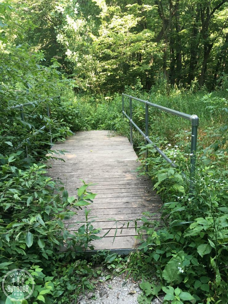 margo frankel state park trail (3)