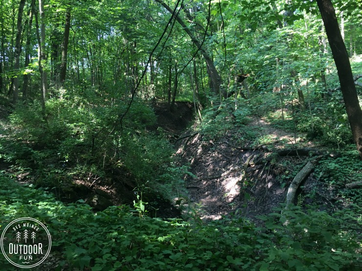 margo frankel state park trail (5)